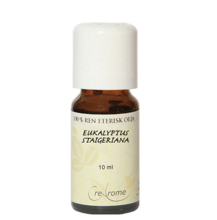 Eukalyptus staigeriana eterisk olja
